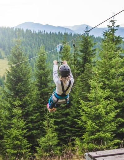 Ziplining Experience In The Woods